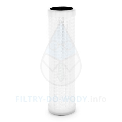 Wkład Atlas Filtri AC 10 SX