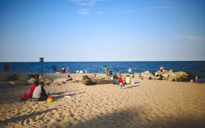 Jakość wody nad Bałtykiem się pogarsza – uważaj na sinicę!