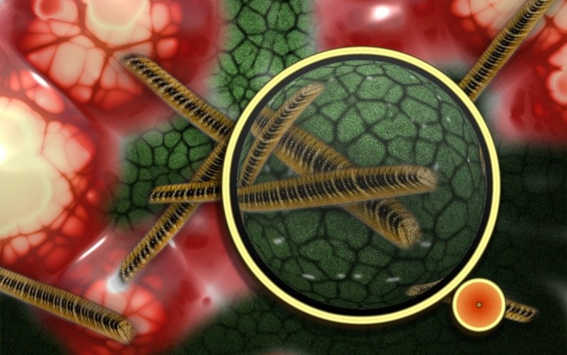 Jak działają lampy bakteriobójcze?