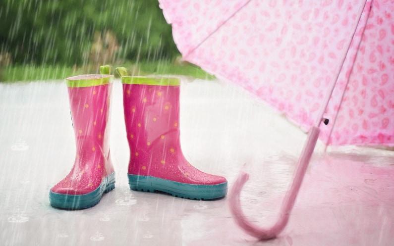 Wykorzystanie wody deszczowej w domu i w ogrodzie